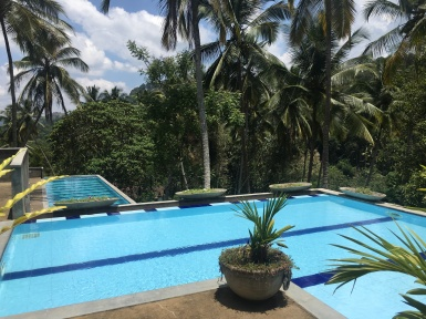 Amazing pool day @ Athulya Villas
